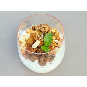 Домашній йогурт з гранолою та медом (200 гр)